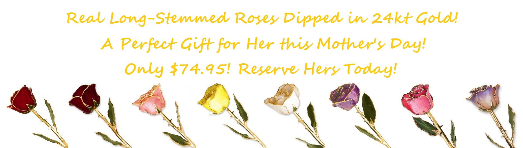 Gold-Dipped Roses for Website (Mother's Day)